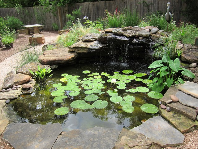 HOW TO CREATE A WONDERFUL WATER GARDEN