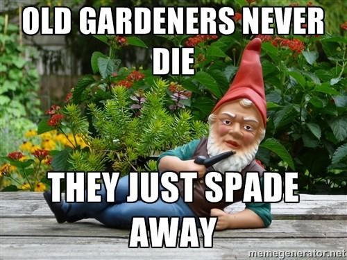 OLD GARDENERS NEVER DIE…