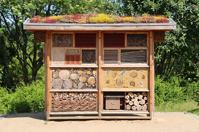 HOW TO MAKE A BUG HOTEL TO ATTRACT BENEFICIAL INSECTS