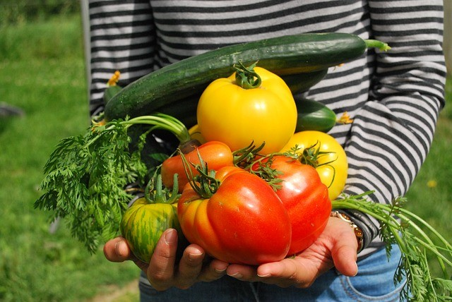 Avoid These 10 Common Vegetable Gardening Mistakes