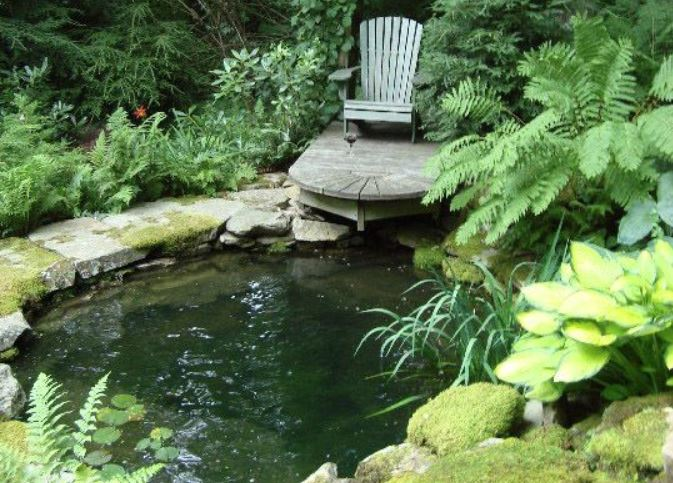 6 AWESOME DESIGNS FOR A GARDEN POND