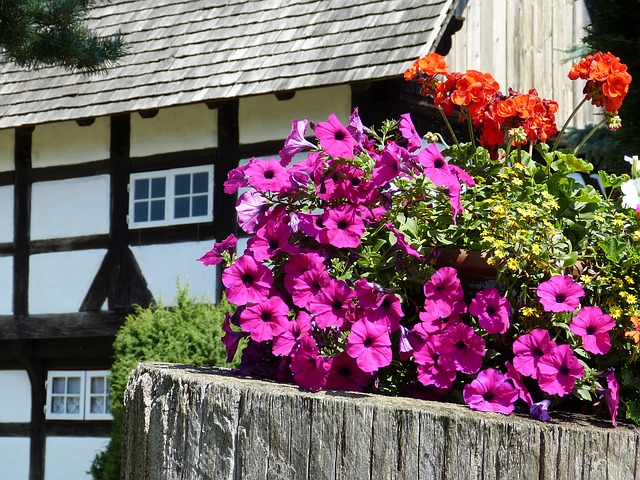 25 Great Ideas For Planting Containers
