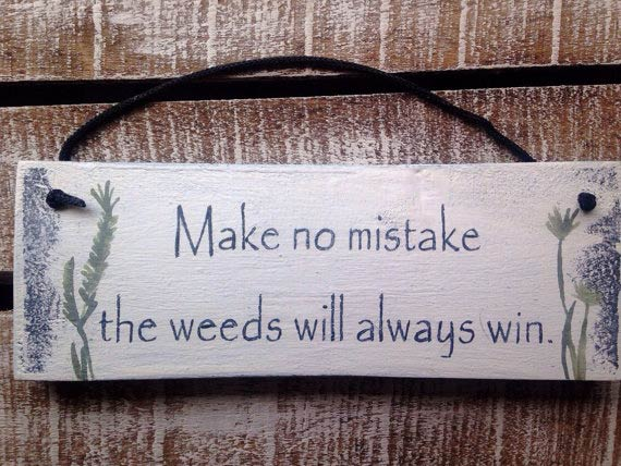 Top 18 Funny And Sentimental Garden Signs