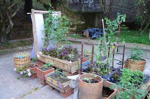 14 Crazy Containers for Growing Vegetables