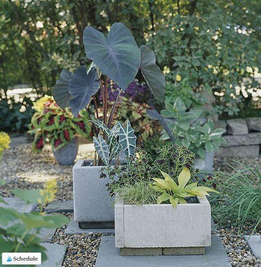 17 Creative Concrete Garden Projects