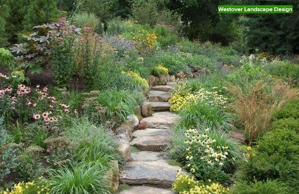 9 Ways to Make Your Garden Wildlife-Friendly
