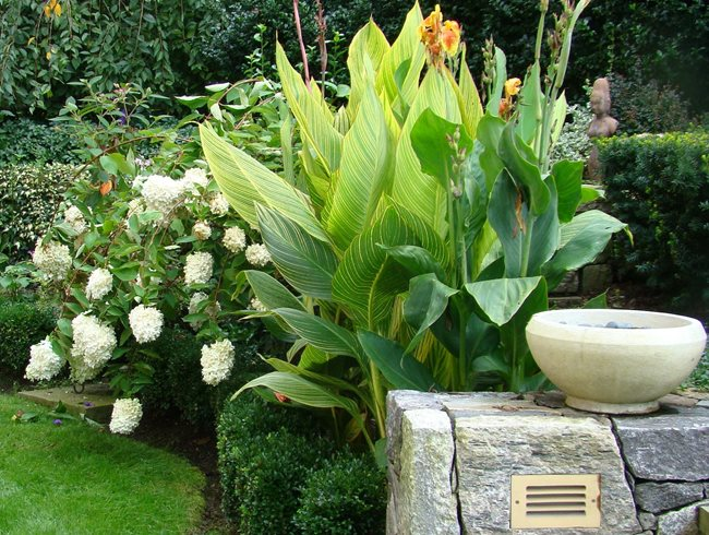 9 Tips on Selecting Attention-Grabbing Plants for Your Garden